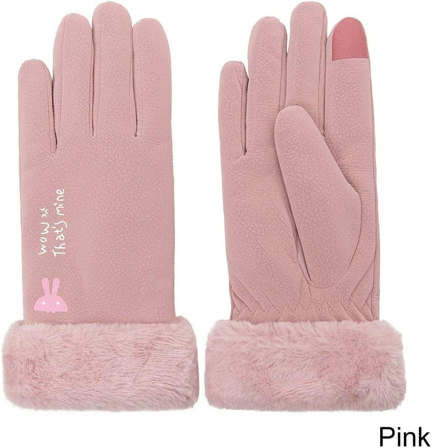 FASGION Winter Gloves Women Touch Screen Waterproof Outdoor Leather Thicken Warm Gloves Female Elastic Mittens (Color : Pink)