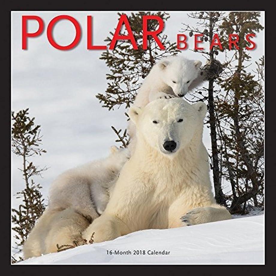 古くなった知覚的娯楽Polar Bears 2018 Wall Calendar [並行輸入品]