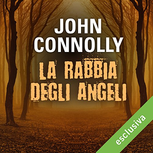 La rabbia degli angeli audiobook cover art