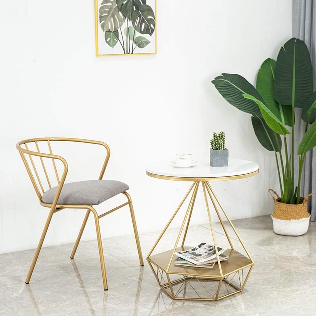 Chaise WGZ de Salle, de Bureau Simple, créative Dossier, Loisirs, Maison Adulte de Salle Simple (Color : Golden-Pink) Gold-grey