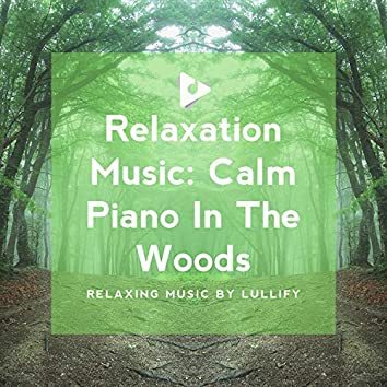 Relaxation Music: Calm Piano In The Woods