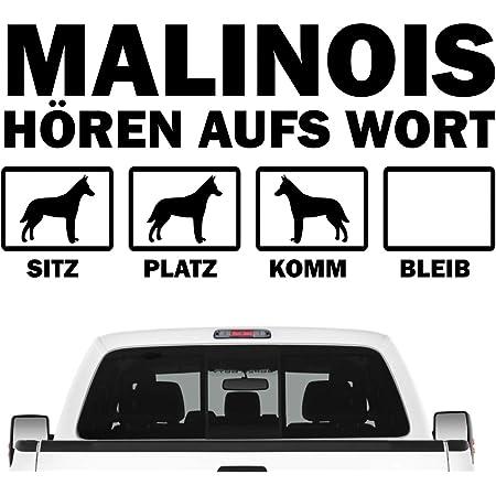 Siviwonder Malinois Hundesport Auto Aufkleber Hund Folie Belgian Mali Schäferhund Farbe Rot Größe 30cm Auto