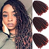 Kelissa 3 Packs 90 Strands Spring Twist Crochet Braiding Hair 8 Inch Bomb Twist Crochet Braids Ombre Colors Low Temperature Synthetic Fluffy Hair Extensions 110g/Pack 1b/350#Colors