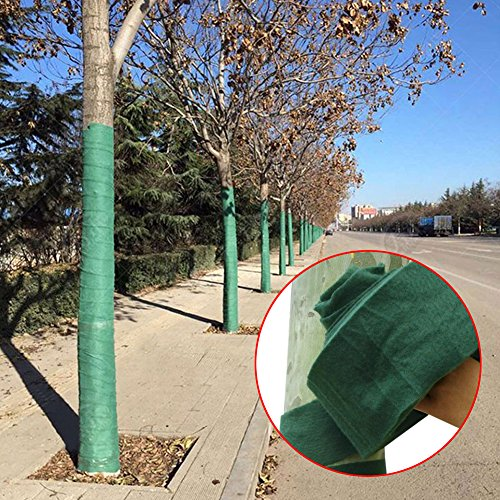 20 m protection Arbre stratifiées, Winter-proof protection contre l'usure plantes Bandage pour maintien au chaud et hydratant
