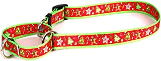 Best holiday martingale dog collars Reviews