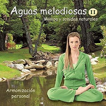 Aguas Melodiosas 2