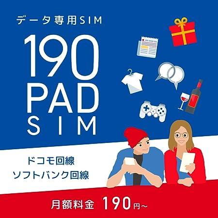 日本通信 b-mobile S 190PadSIM 申込パッケージ BM-PS2-P