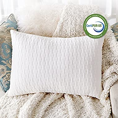 Sable Shredded Memory Foam Pillow for Sleeping, CertiPUR-US & FDA Registered Hypoallergenic w/Thickened Bamboo Foam Blended Pillowcase for Home & Hotel Collection, Neck Pain Relief, Queen Size