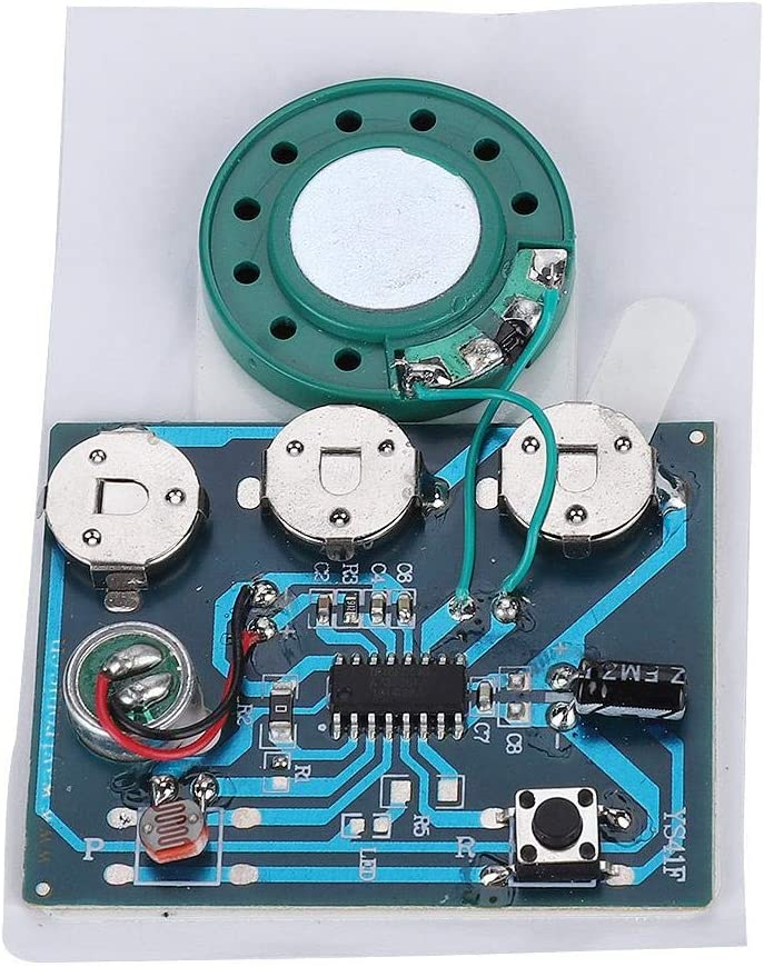 Baltimore Mall sjlerst Sound Large discharge sale Recordable Module Recorda Voice Recording