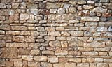 Biggies- Window Well Scenes Wall Art- Stone, 60' x 120'