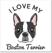CafePress - I Love My Boston Terrier Square Car Magnet 3