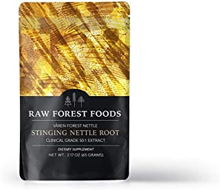 RAW Forest Foods - Stinging Nettle Root Extract Powder (65 Grams) - 50:1 Potency to Support Prostate Health, Enhance Sexual Activity and Testosterone Boost, and Fight Hair Loss - Vegan