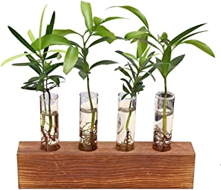 HP95 Creative Glass Bulb Vase for Home & Office - Wall Hanging Test Tube Planter Modern Flower Bud Vase with Wood Stand Tabletop Glass Terrarium for Propagating Hydroponics Plants