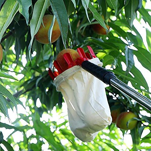 Landwirtschaftliche Gartengeräte, Obstpflücker, Erntemaschine, Obstpflücker in großer Höhe,...