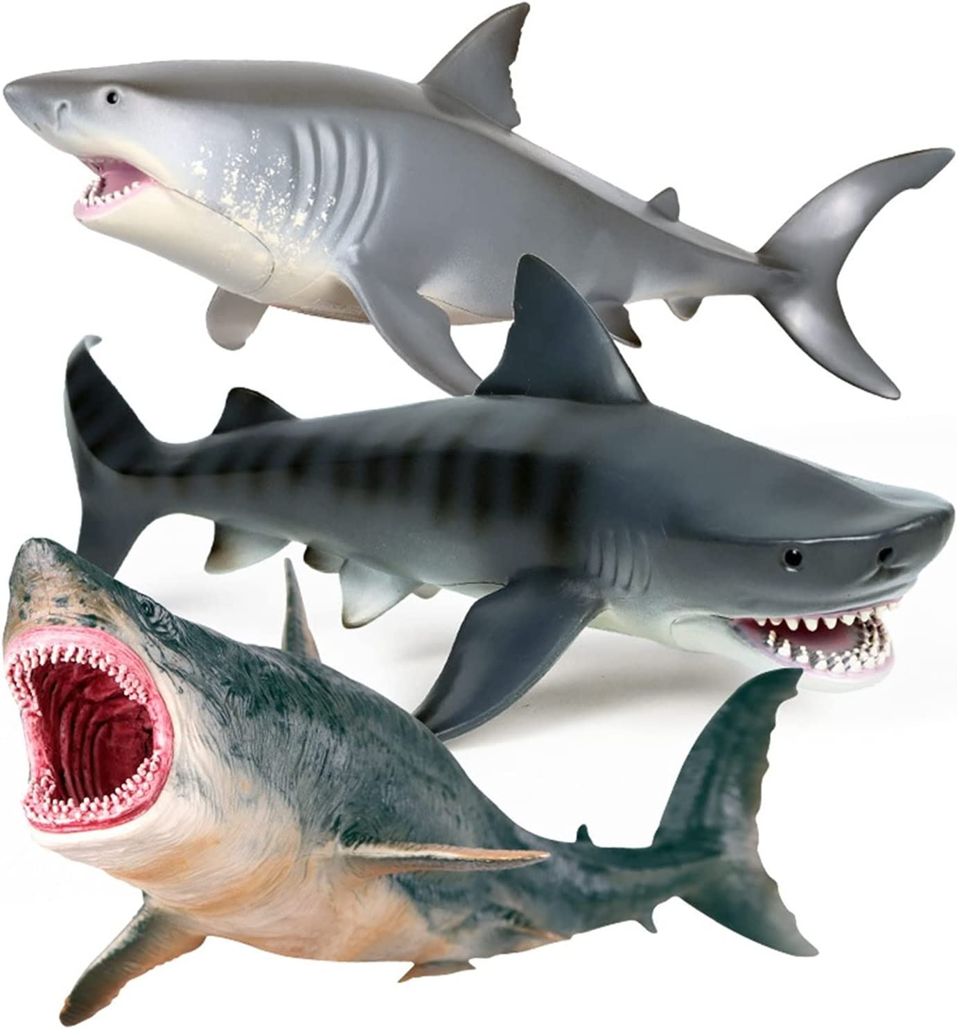 BAIMENGLONG Animal 3 Pieces of Marine Animer and NEW before selling ☆ price revision Mov Whale Shark Model Life