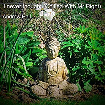 I Never Thought (Chilled with Mr Right)