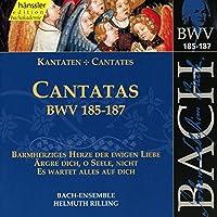 Bach:Cantatas Bwv.185