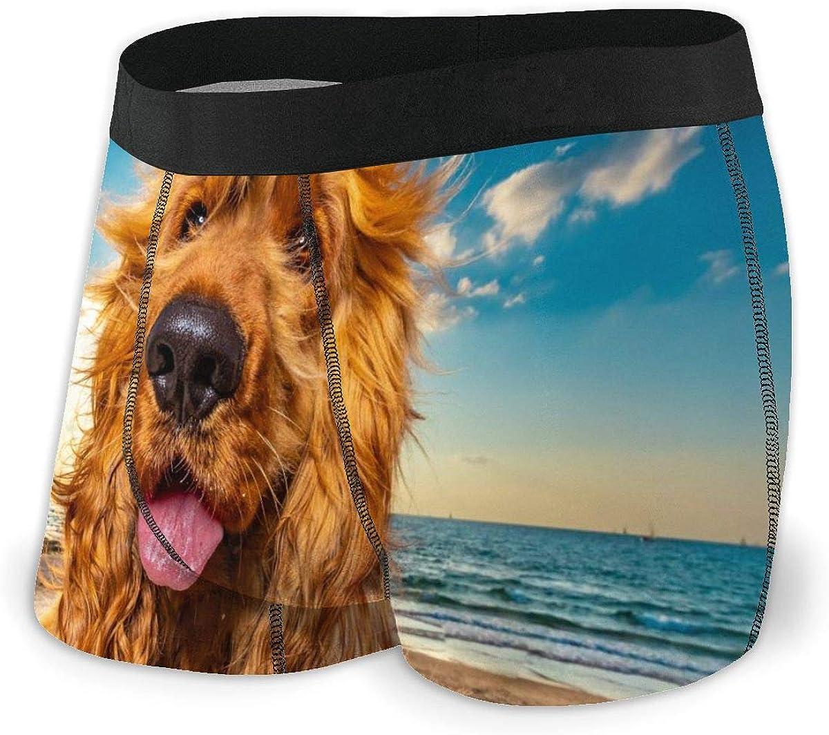 Mens Boxer Briefs Cute Funny Golden Retriever Dog Bikini Underwear Stretch Low Rise Trunks Boys Underpants