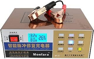Cargador de batería moto coche mainteneur inteligente automático