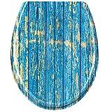 LARS360 Tapa de WC, Asiento Inodoro para Cualquier Modelo, Tapa de Inodoro con Cierra Suave y Lenta en Forma de Oval (Veta de Madera Azul)