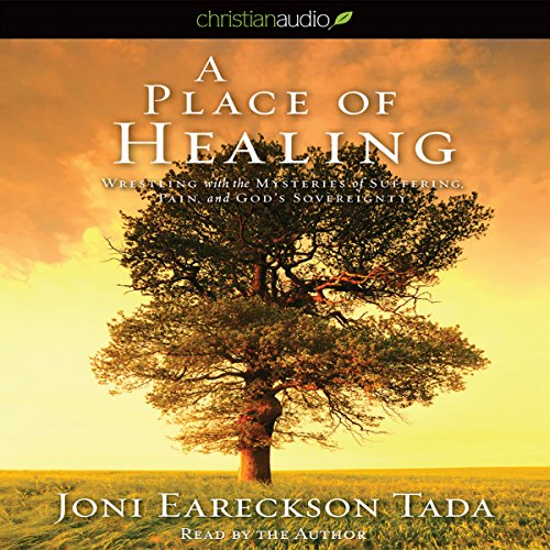 A Place of Healing cover art