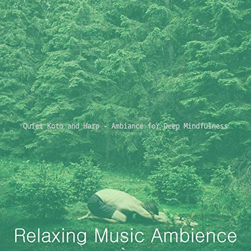 Relaxing Music Ambience