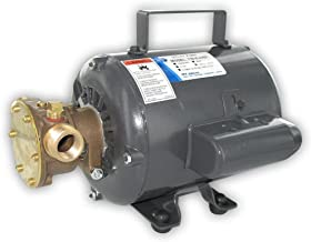Jabsco 11810-0003 Marine Series General Purpose Utility Pump (Nitrile Impeller, Open Drip Proof Motor Non CE, 115-Volt, 1/2