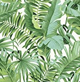 NuWallpaper NU2906 Maui Peel & Stick Wallpaper, Green