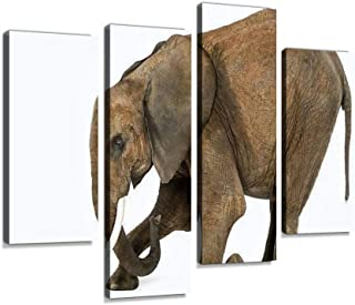 African elephant kneeling in front of a mouse Canvas Print Artwork Wall Art Pictures Framed Digital Print Abstract Paintin...