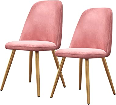 Light Luxury Nordic Dining Chairs Home Dining Room Chair for Kitchen Mid Century Modern Armless Side Fabric Chair with Metal