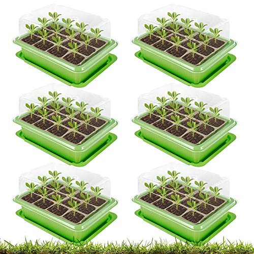 ODOMY 6 Stücke Zimmergewächshaus Anzuchtkasten,Mini Gewächshaus Anzucht,Kunststoff Anzuchtschalen,12 Löchern, Ideal für Sämling Pflanze Aufzucht, Anzuchttöpfe Anzuchtset Mini-Gewächshaus