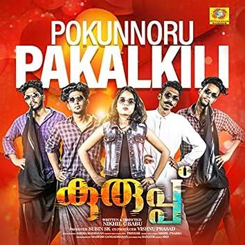 "Pokunnoru Pakalkili (From ""Kuruppu"")"
