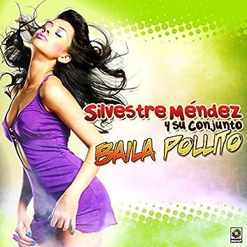 Baila Pollito