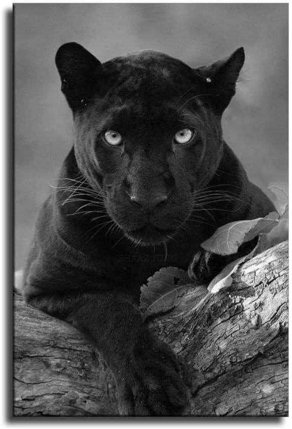 P/óster de la Pantera Negra con dise/ño de animal negro y p/ósteres para decoraci/ón de dormitorio familiar