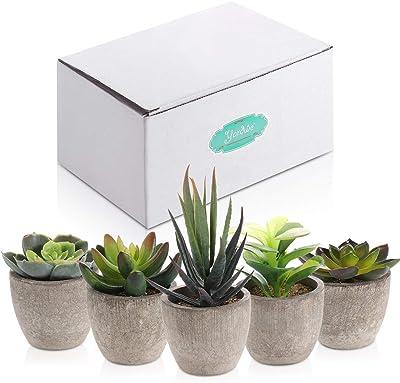 Yardwe 5/Unidades Artificial crasas kunstpflanze con macetas Mesa decoraci/ón hogar jard/ín decoraci/ón
