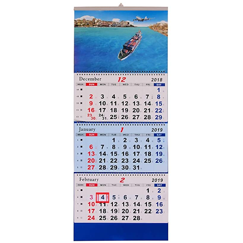 Olpchee 2019 Wall Calendar 3-Mothly Display with Twin Wire Binding Beatiful Print Large Calendar for Office Home School (Ship 2)