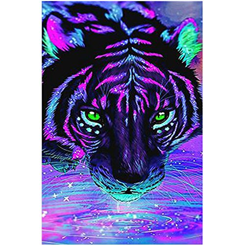jieGorge 5D Embroidery Paintings Rhinestone Pasted DIY Diamond Painting Cross Stitch , Decors for Home Christmas New Year (Multicolor)