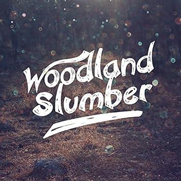 Woodland Slumber