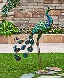 Colorful Metallic Bird Decor (Peacock)