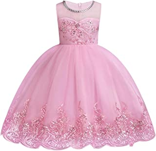 Nobrand Summer Elsa Anna Girl Dress Ball Gowns Kids Dresses for Girls Party Princess Girl Clothes for 4 6 7 8 10 12 Year Birthday Dress