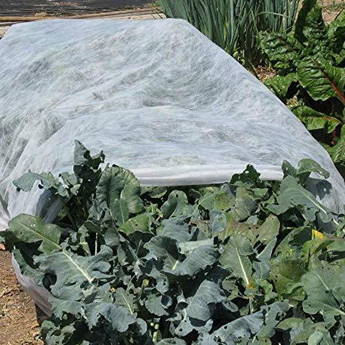 Takefuns Housse de protection d'hiver pour plantes en pot, protection contre le gel pour la germination des graines - 2 x 6 m