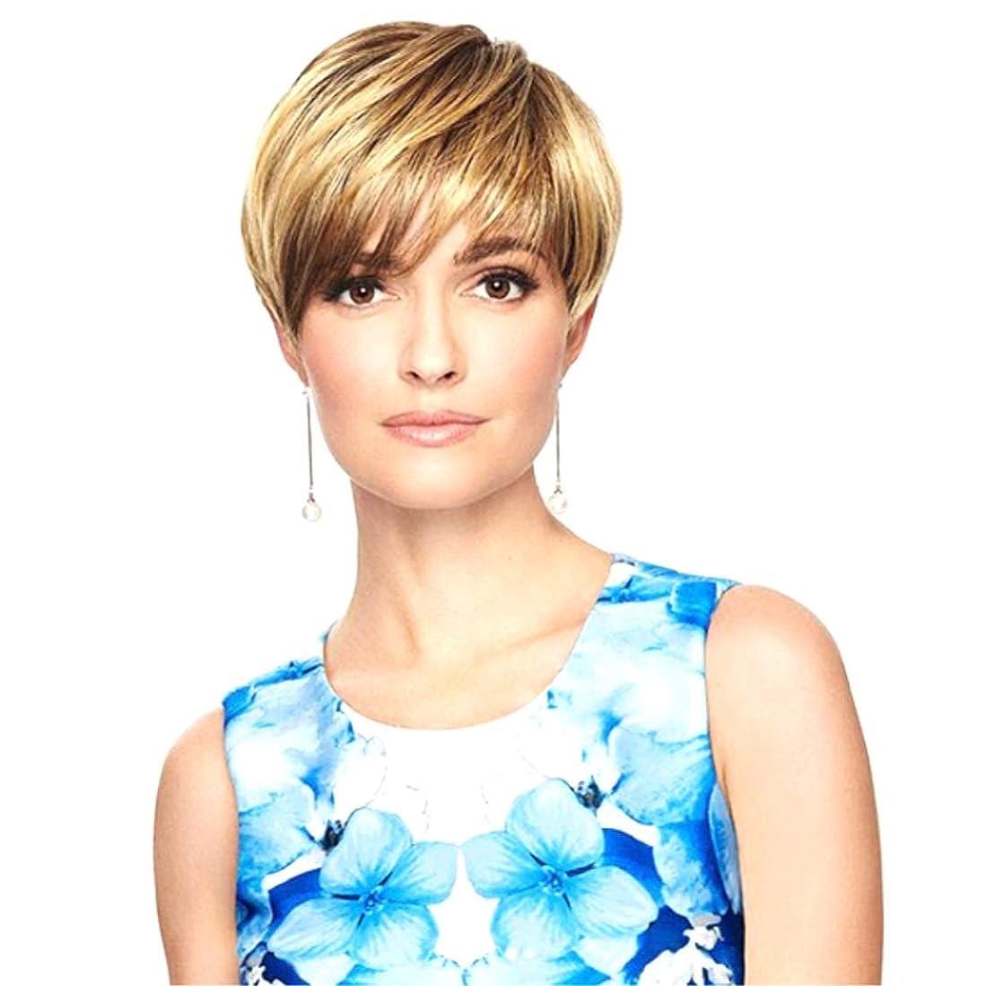 振幅間違いなく美的Summerys 女性のためのかつらショートセクション斜め前髪ショートストレートヘア