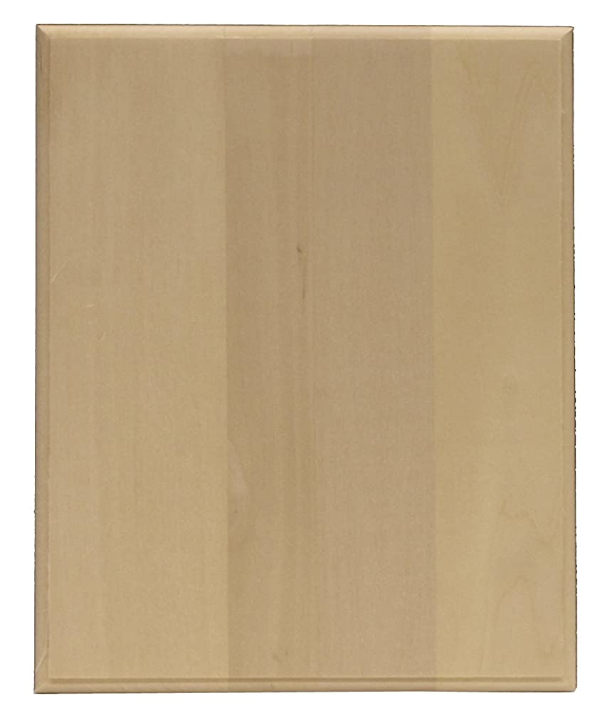 Walnut Hollow Basswood Rectangle Plaque, 8