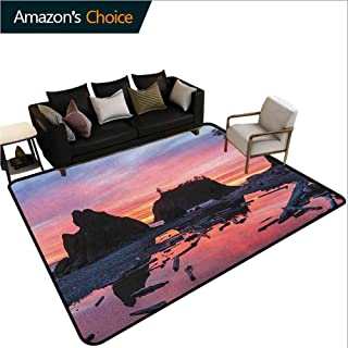 YucouHome National Parks Print Door Mats for Inside, Sunrise in Slow Moving Stream Pinky Soft Colored Misty Skyline Mystic Beach, Fashionable High Class Living Dinning Room(4'x 6') Multicolor