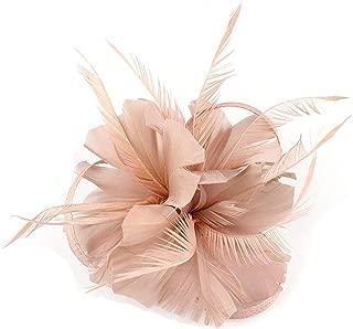Hilary Ella Fascinators Hat,Flower Mesh Ribbons Feathers Headband,Kentucky Derby Wedding Tea Party Fascinator