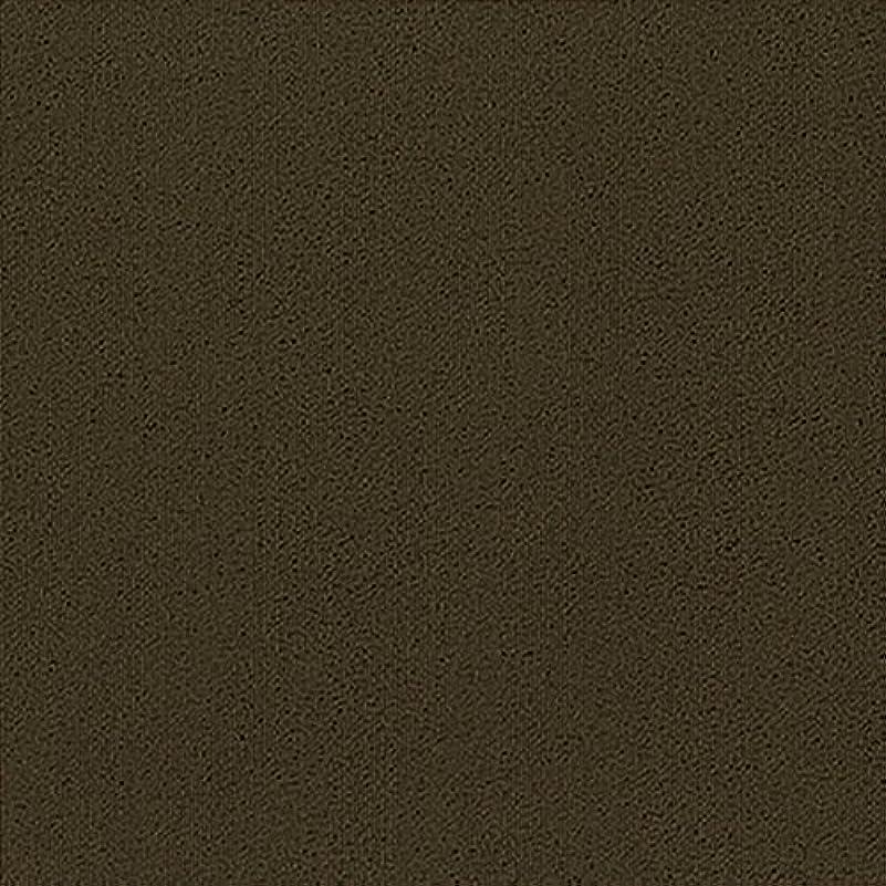 のど言語誤ってシンコール タイルカーペット16枚 パルコソリッド ブラウン PAS-208