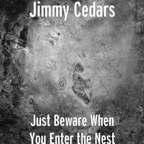 Jimmy Cedars
