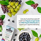 Garden of Life Dr. Formulated Brain Health Memory & Focus for Adults 40+, 60 Count #1