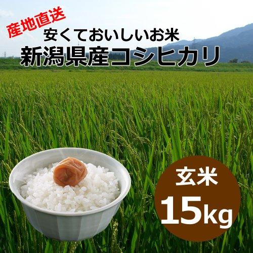 【自宅用】[玄米]安くておいしいお米 新潟県産コシヒカリ[15キロ]
