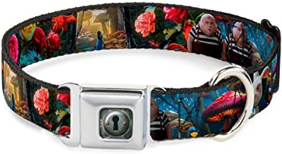 Dog Collar Seatbelt Buckle Alice in Wonderland Movie Encounters 9 to 15 Inches 1.0 Inch Wide